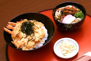海老丼とミニ山菜うどん・そば